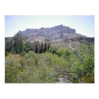 Arizona Desert Postcards
