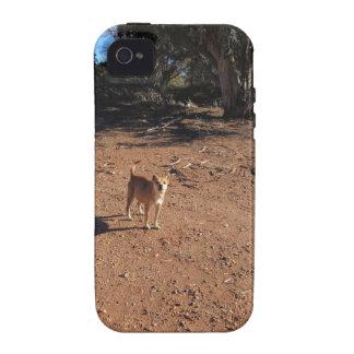 Arizona Dog iPhone 4 Case