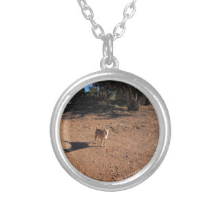 Arizona Dog Jewelry