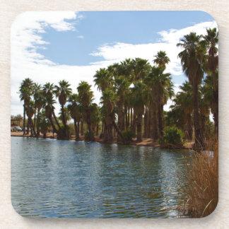 Arizona Lake Coaster