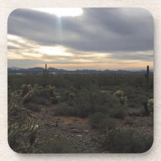 Arizona Landscape Coaster