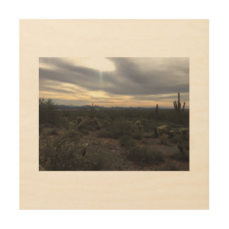 Arizona landscape wood wall art