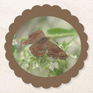 Arizona Metalmark Butterfly Paper Coaster