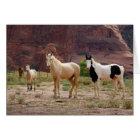Arizona, Navajo Indian Reservation, Chinle, Card