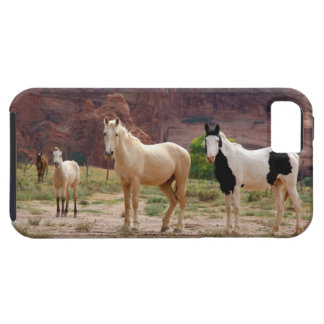 Arizona, Navajo Indian Reservation, Chinle, iPhone 5 Cases