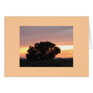 Arizona Painted Desert Sunset Photo Note Cards