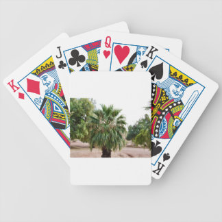 Arizona Palm Bicycle Playing Cards