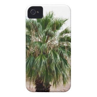 Arizona Palm Case-Mate iPhone 4 Case