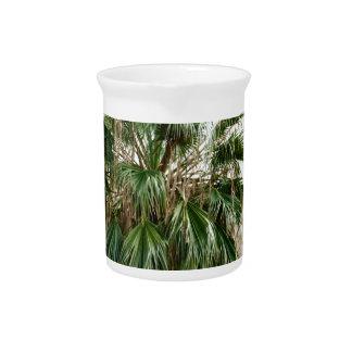 Arizona Palm Pitcher