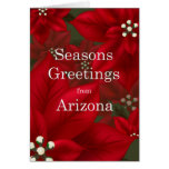 Arizona Poinsettia Seasons Greetings Christmas Greeting Card