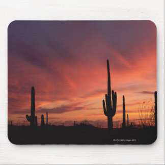 Arizona sunset over saguaro cacti mouse pad