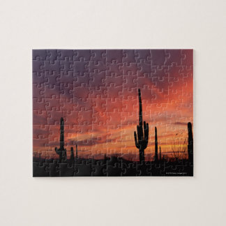 Arizona sunset over saguaro cacti puzzles