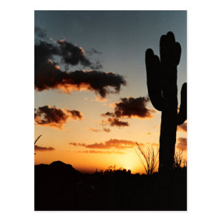 Arizona Sunset Picture Postcard