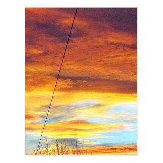Ark Orange Sky At Sunset Postcard