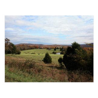 Arkansas Landscape Postcard