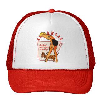 Arkansas Pinup Cap
