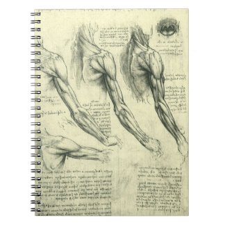 Arm and Shoulder Anatomy by Leonardo da Vinci Notebook