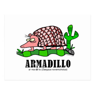Armadillo by Lorenzo Postcard