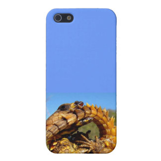 Armadillo Lizard Iphone Case iPhone 5/5S Covers
