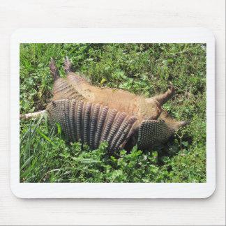 Armadillo Road Kill - Dasypodidae Mouse Pad