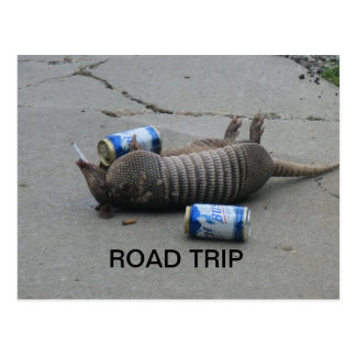 Armadillo Road Trip Postcard
