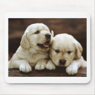 Armant Puppy Dogs Mouse Pad