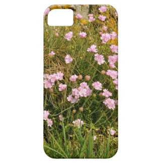 Armeria maritima pink sea growing on a cliff iPhone 5 covers