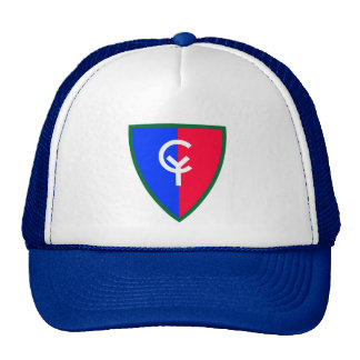 Army 38th Infantry Division Cap