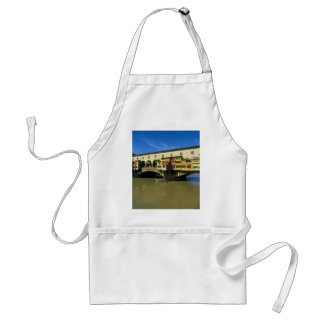 Arno River, flooded, Florence, Italy Apron