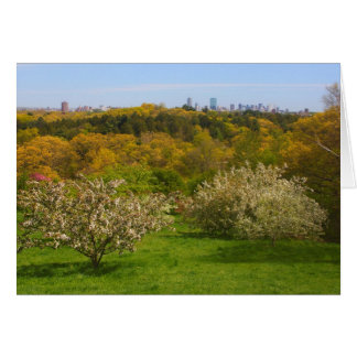 Arnold Arboretum View to Boston from Peter's Hill Card