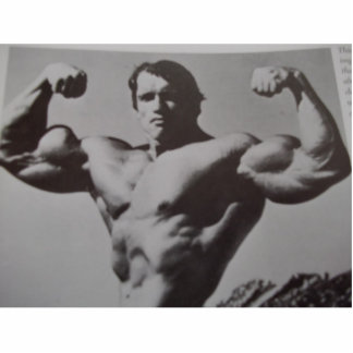 Arnold Acrylic Cut Out