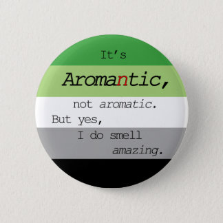 Aromantic/Aromatic Pin