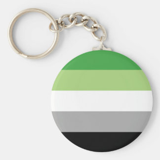 aromantic flag key ring