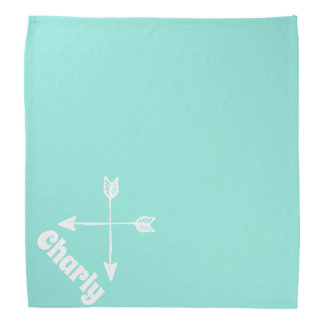 arrows light aqua personalized pet bandana