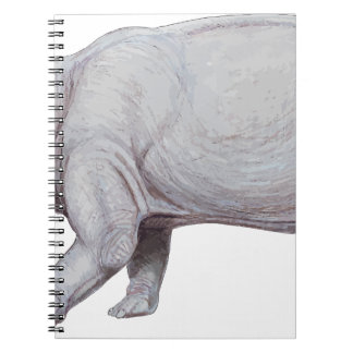 Arsinoitherium Notebook