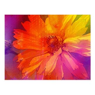 Art Floral Vintage Rainbow Background Postcard