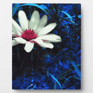 Art flower plaque
