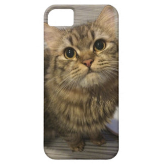 Art iphone5 coat case for the iPhone 5