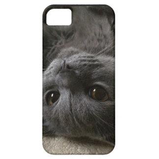 Art iphone5 coat iPhone 5 cover