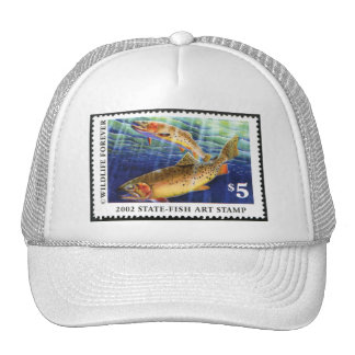 Art of Conservation Stamp – 2002 Cap