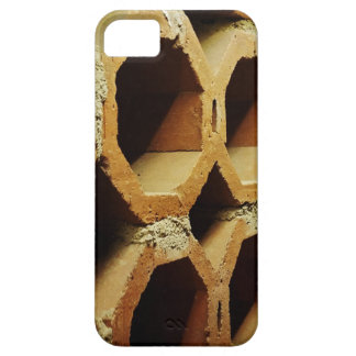 Art of Daily Walks Barely There iPhone 5 Case