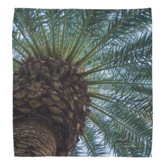 Art Of The Palm Tree Bandana