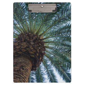 Art Of The Palm Tree Clipboard