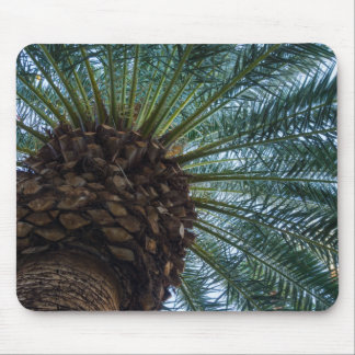 Art Of The Palm Tree Mouse Pad