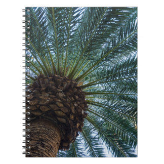 Art Of The Palm Tree Notebooks
