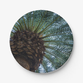 Art Of The Palm Tree Paper Plate