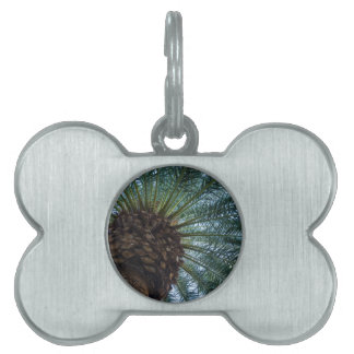 Art Of The Palm Tree Pet Name Tag