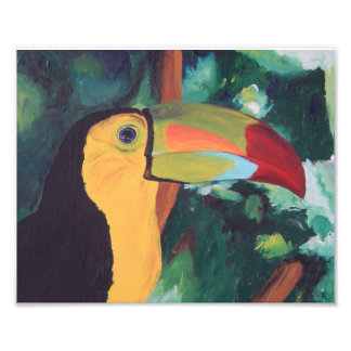 Art Print: Toucan Art Photo