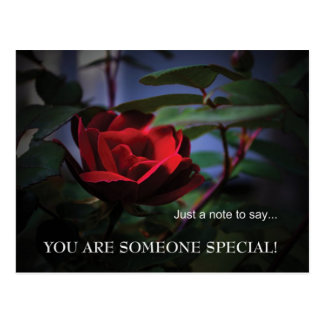 Art Rose Postcard-You Are Someone Special Postcard