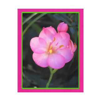 Arte en lienzo Lámina - Flor Rosa Canvas Print